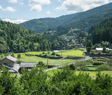 神山の風景